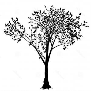 Tree Silhouette Vector Clip Art: High Detailed Tree Silhouette On White Background Vector Clipart