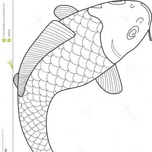 Black And White Koi Vector: Royalty Free Stock Photos Japanese Koi Fish Vector Image