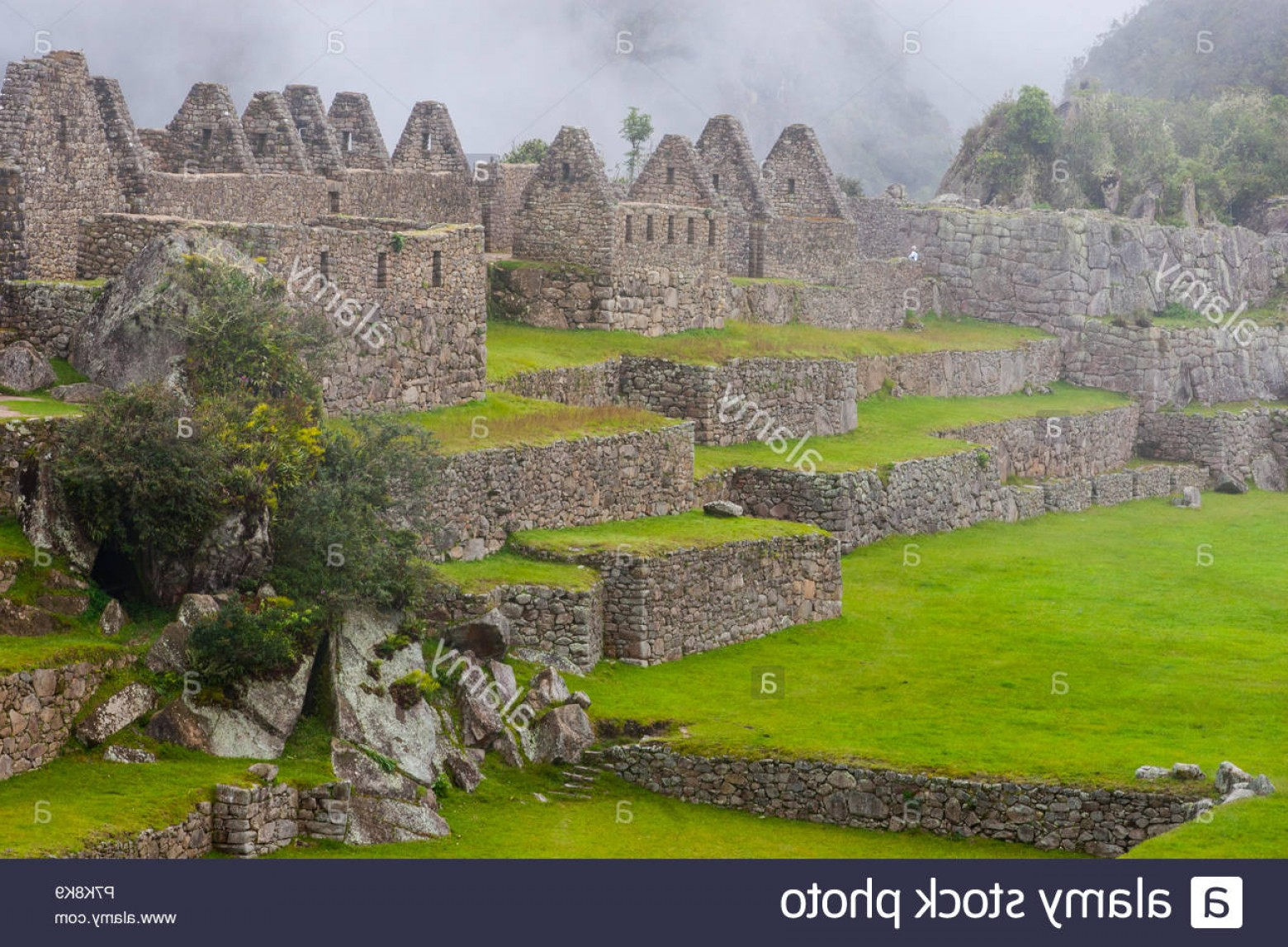 Vector South America Ancient Ruins: Ruins Of Machu Picchu Ancient Inca Lost City In The Andes Nature With Fog Peru South America No People Image
