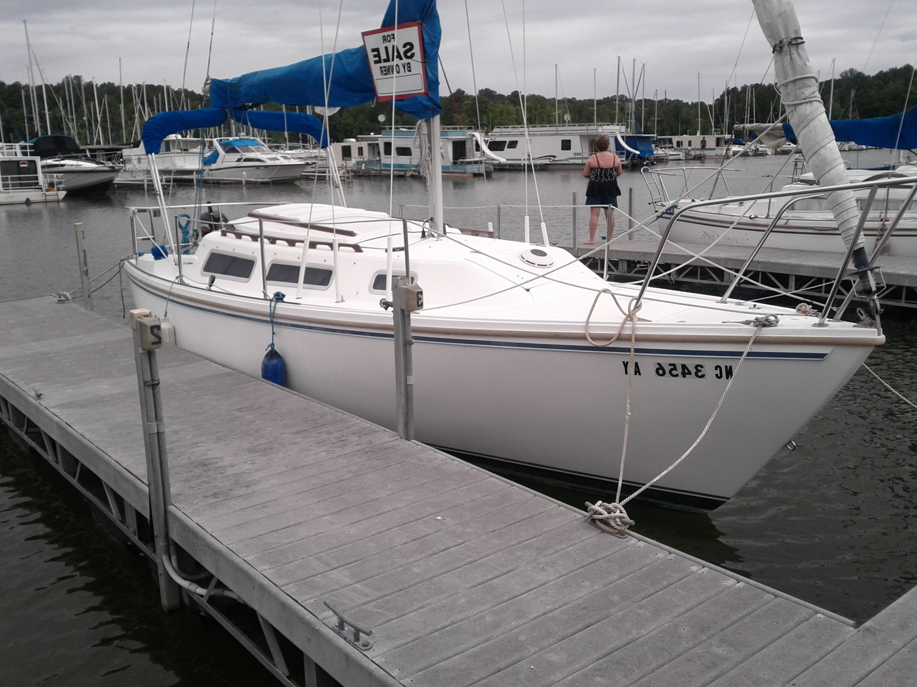 Vanguard Vector Sailboat: Sailboat Charter Miami With Large Sailboats For Sale Together With Average Sailboat Speed Or Sailboats For Sale By Owner Also