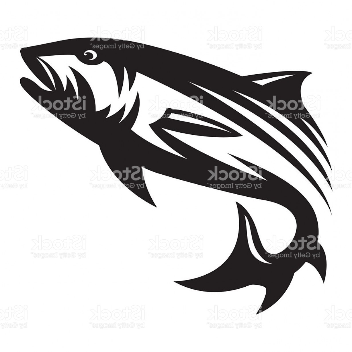 Fish Vector Graphic: Salmon Fish Illustration Vector Gm