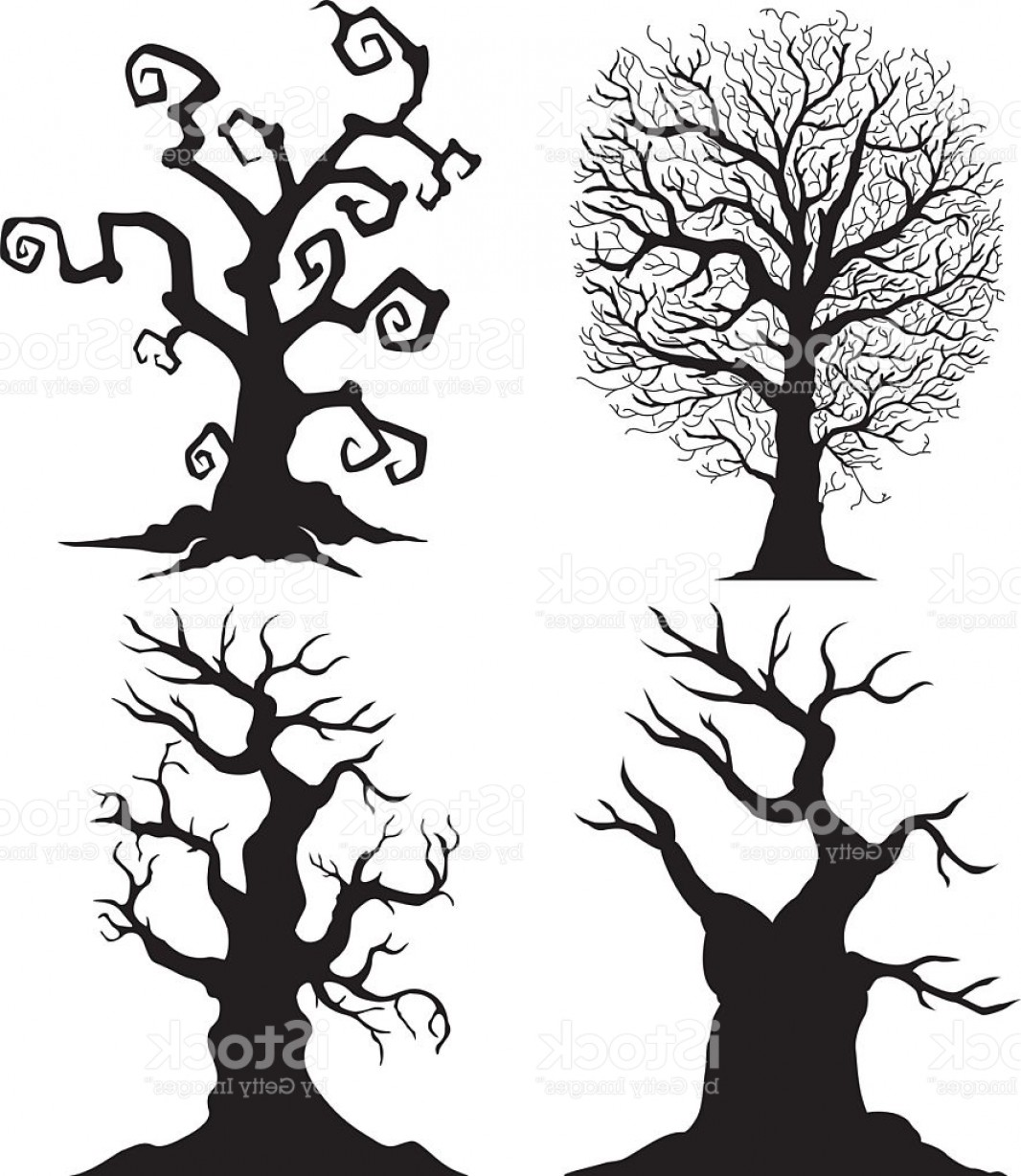 Oak Tree Silhouette Vector Graphics: Scary Tree Silhouettes On The White Background Gm