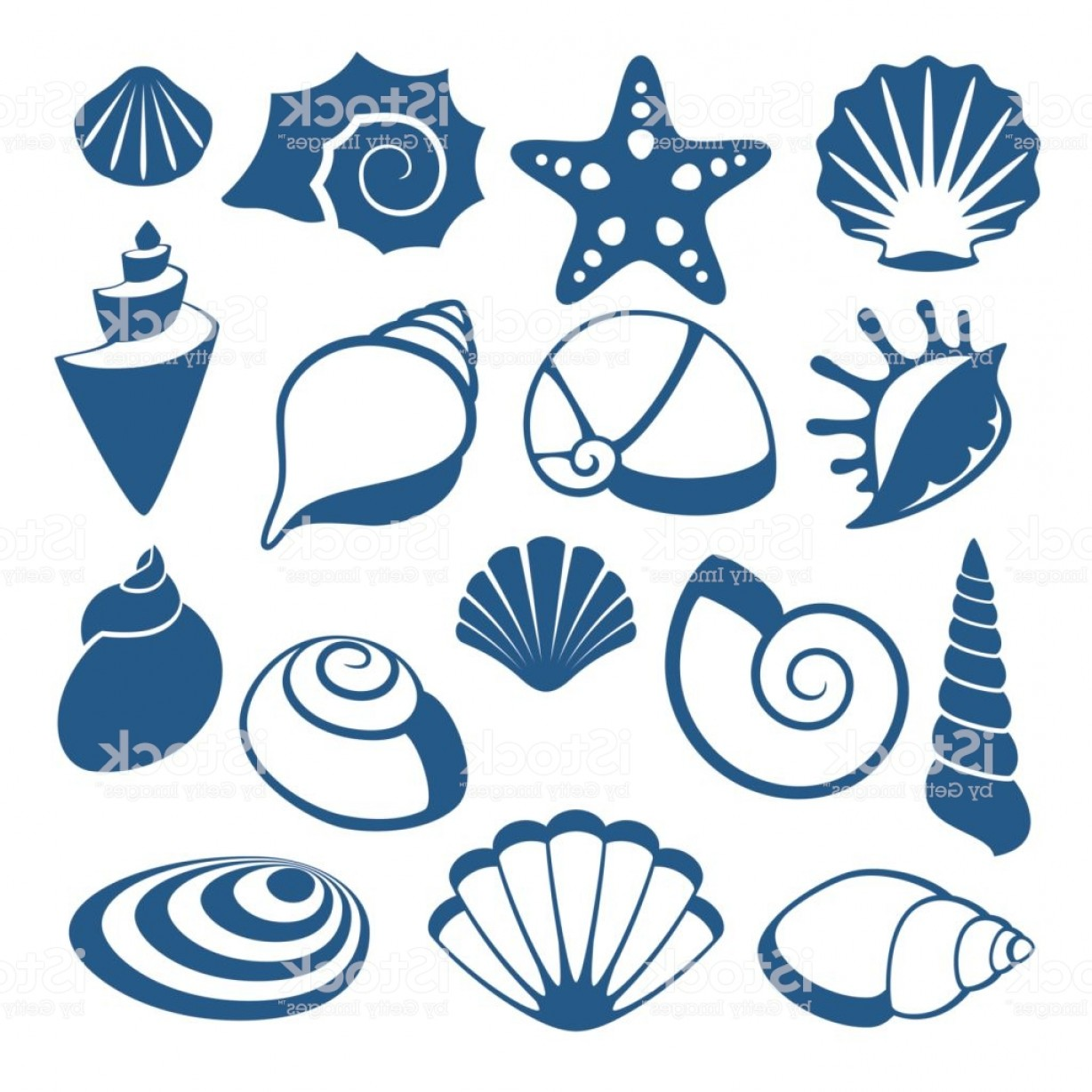 Shell Vector Icons: Sea Shell Vector Silhouette Icons Gm