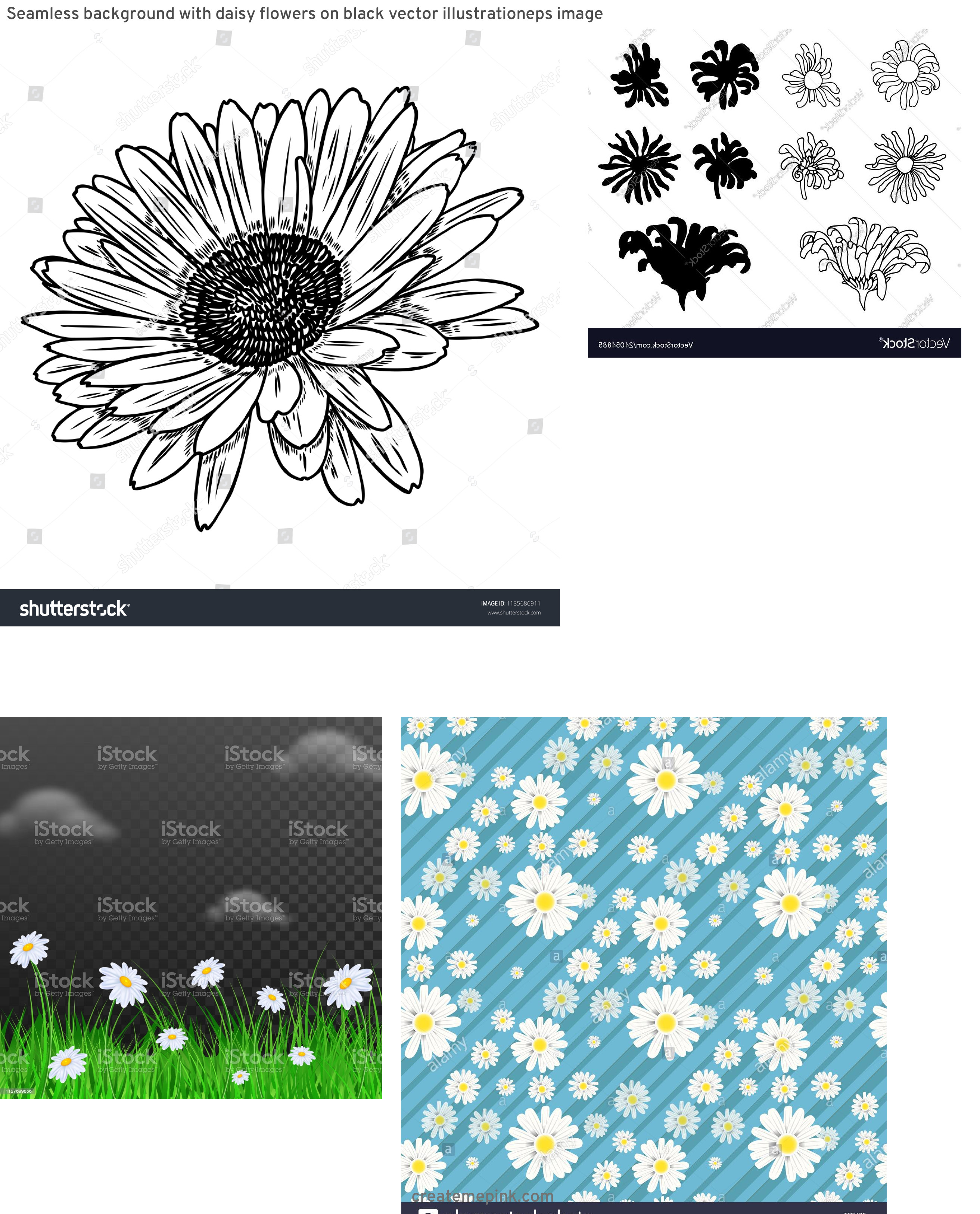 Flower Daisey Black Vector Art: Seamless Background With Daisy Flowers On Black Vector Illustrationeps Image