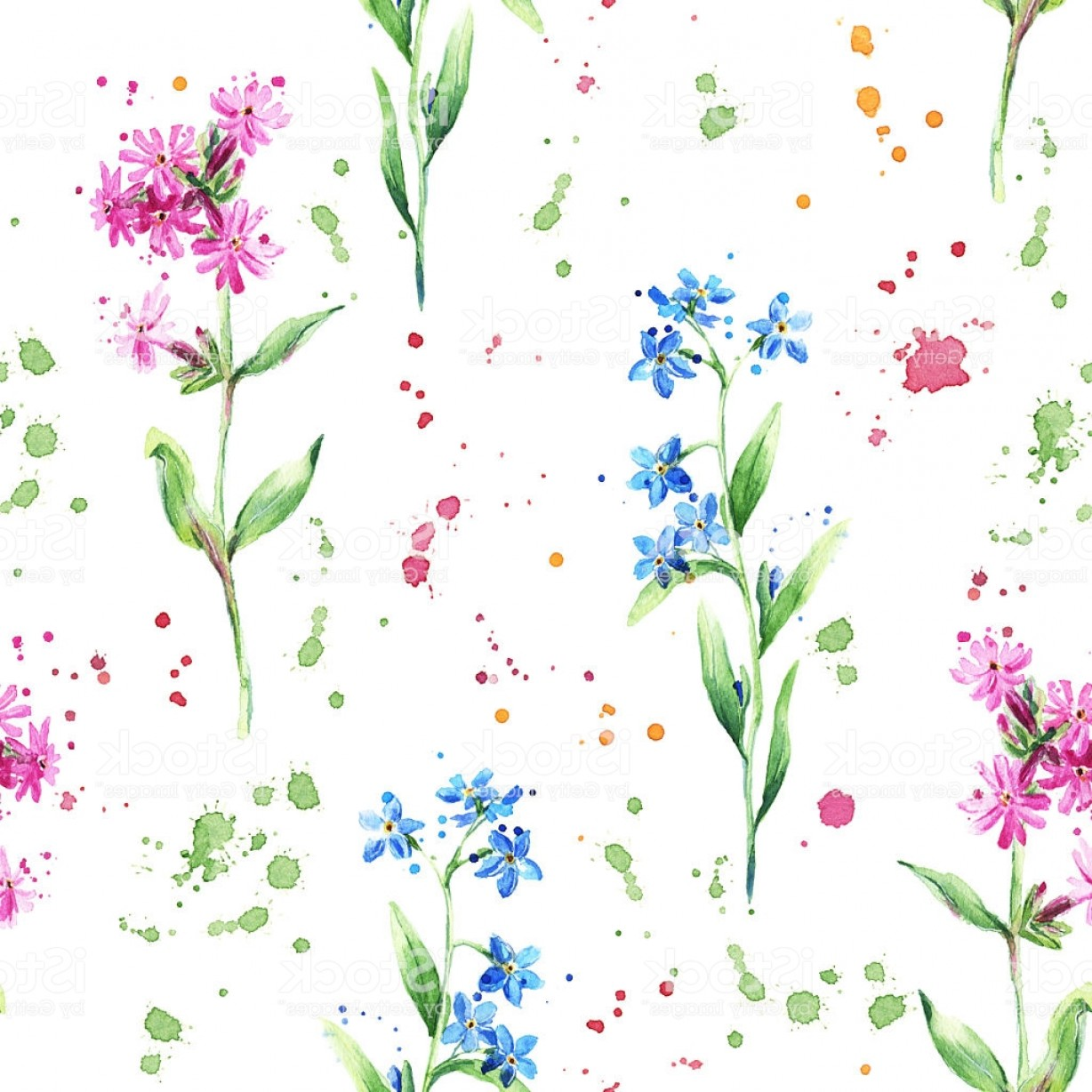 Get For Me Not Flower Watercolor Vector Art: Seamless Floral Pattern With Wild Flowers Forget Me Not Watercolor Gm