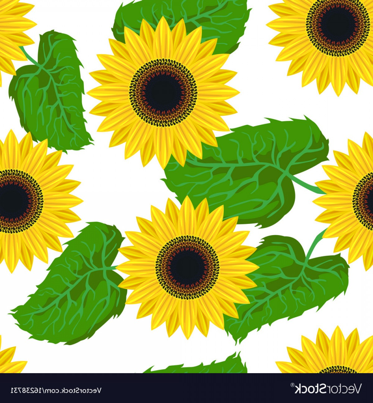 Sunflower Vector Pattern: Seamless Pattern Graphic Sunflower Vector