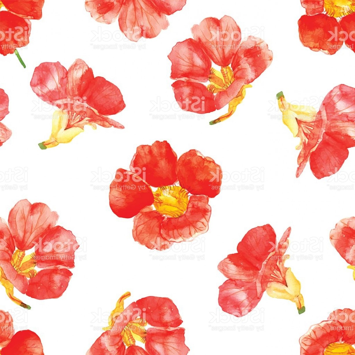 Open Source Vector Graphic Flower: Seamless Pattern With Red Flowers Drawn Watercolor Gm