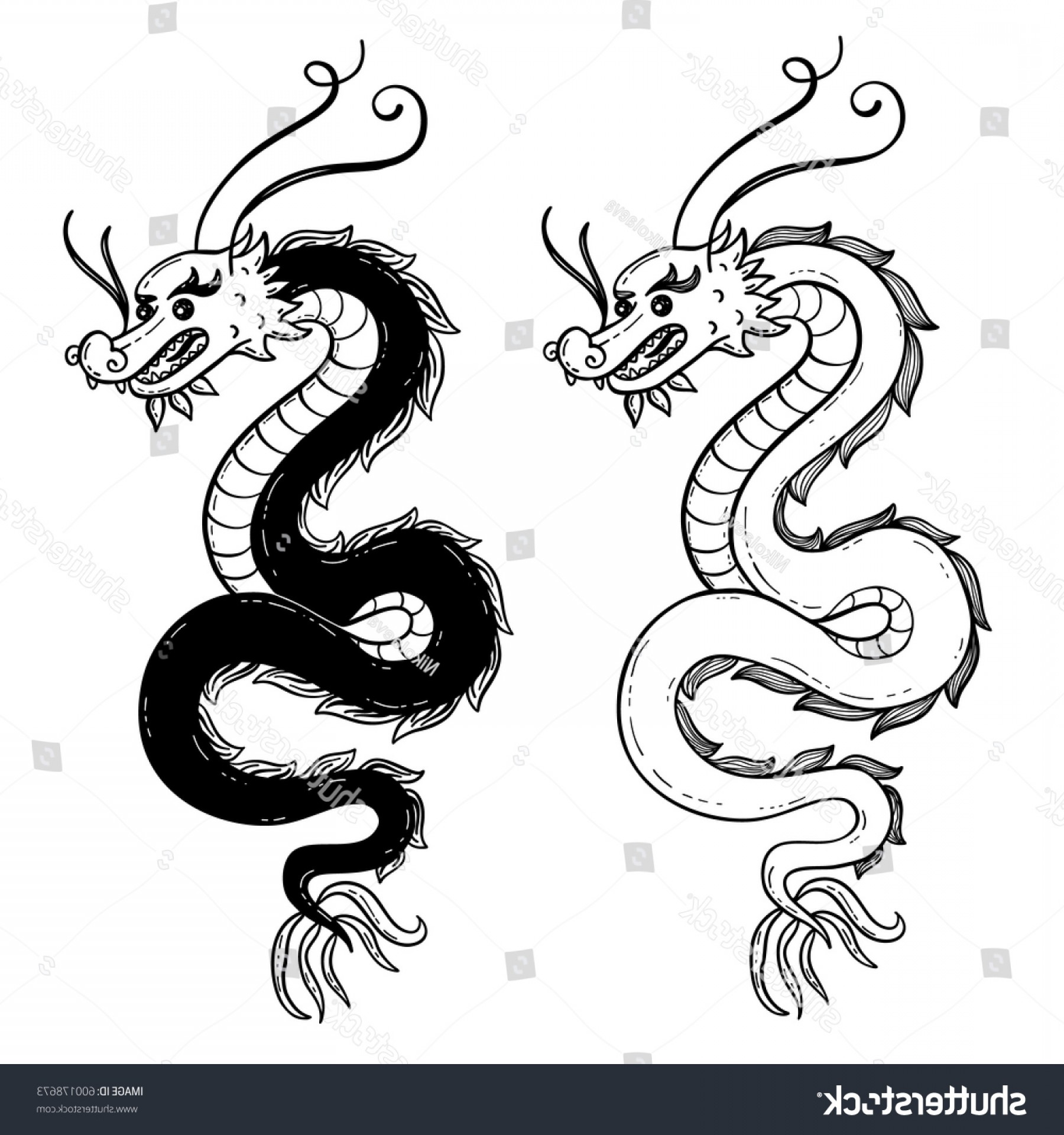 Oriental Dragon Vector: Serpent Chinese Dragon Vector Illustration