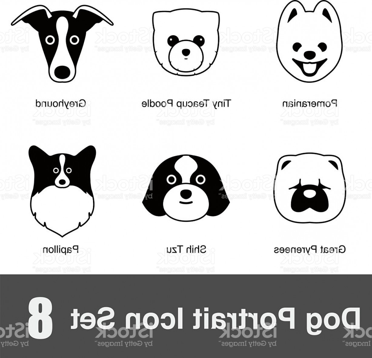 Shih Tzu Vector Siluete: Set Of Cute Dog Face Icons Vector Illustration Gm