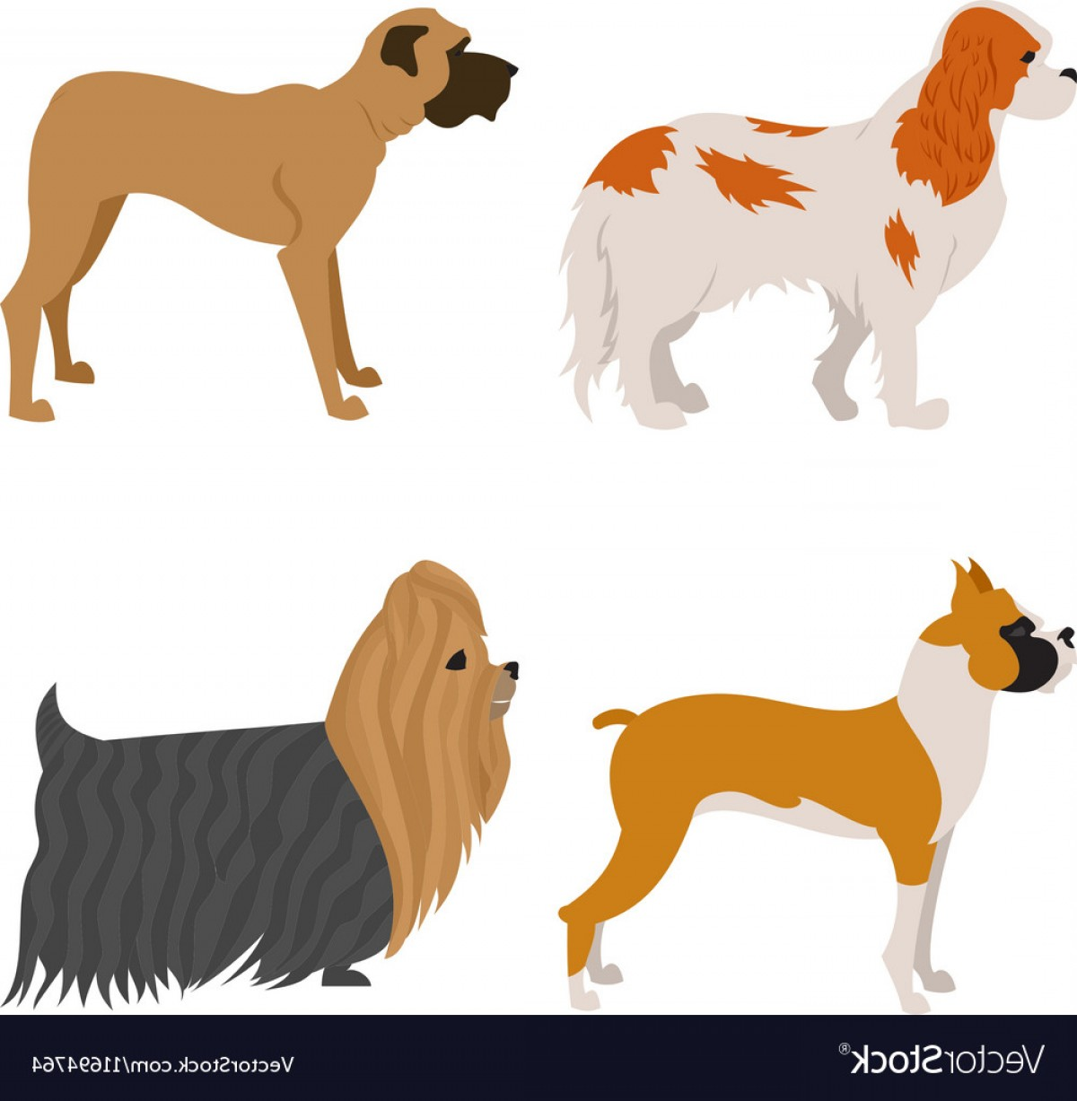 Double Boxer Dog Vector: Set Of Purebred Dogs Vector