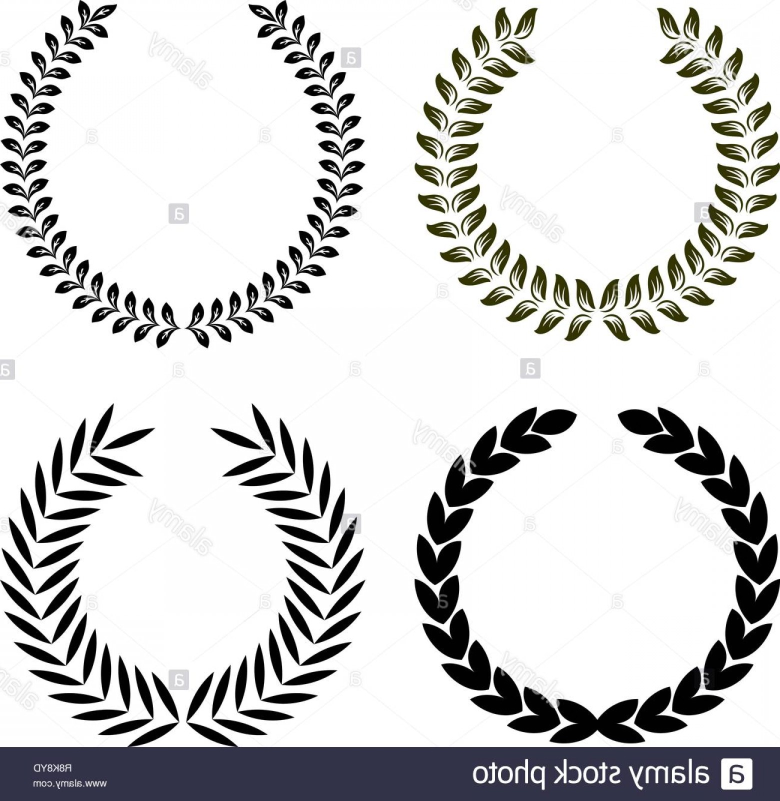 Floral Laurel Wreath Vector: Set Of Vector Isolated Floral Laurel And Olive Wreaths Image