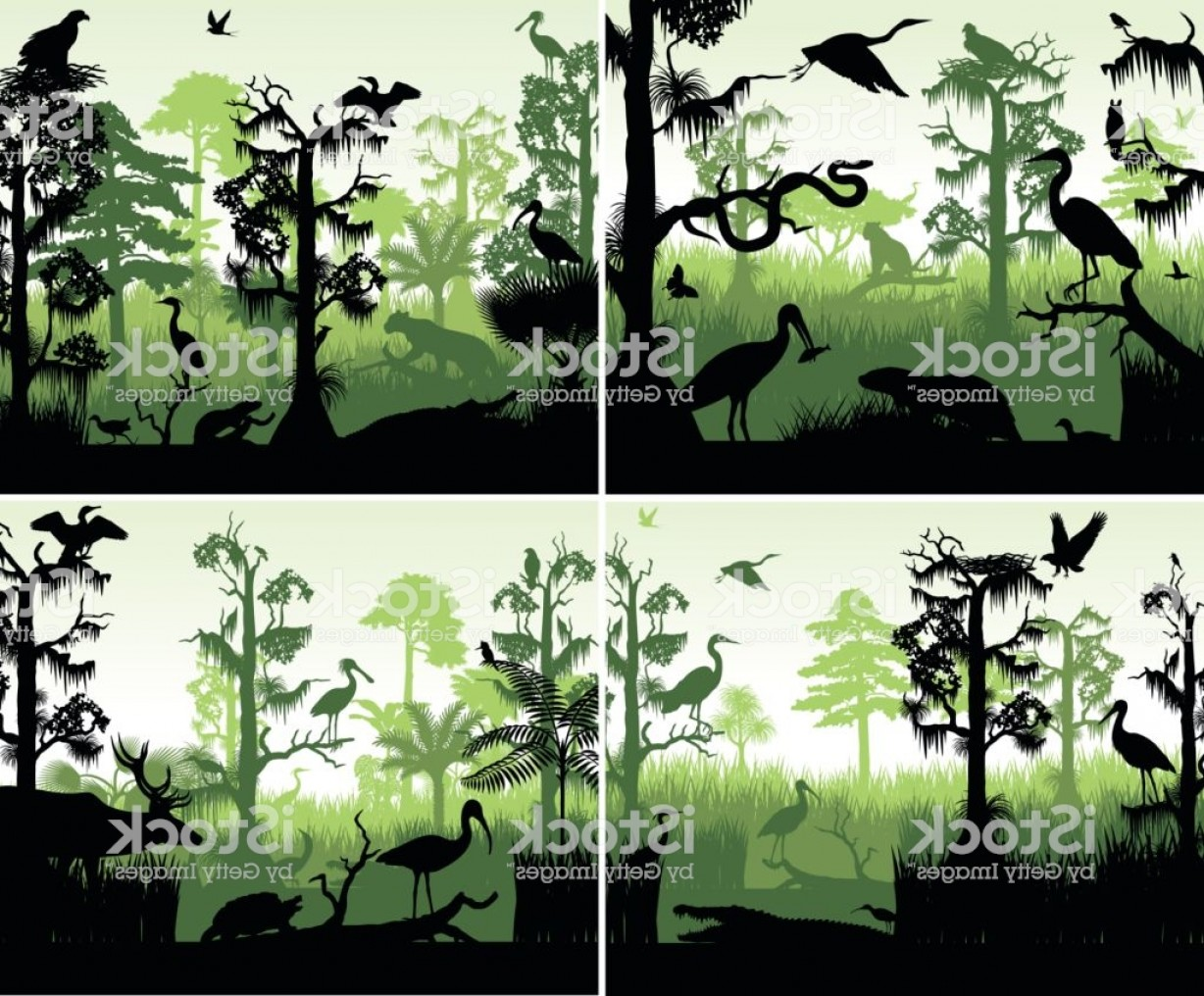 Vector Rainforest Anaconda: Set Of Vector Rainforest Wetland Silhouettes In Sunset Design Template With Animals Gm