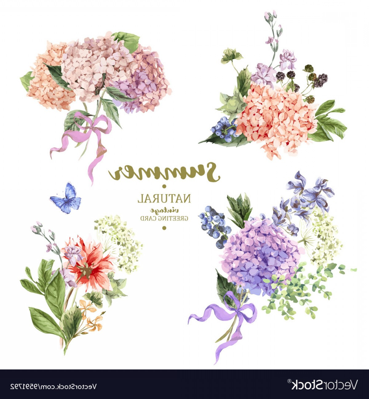 Hydrangea Vector Graphics: Set Of Vintage Bouquet Blooming Hydrangea Vector