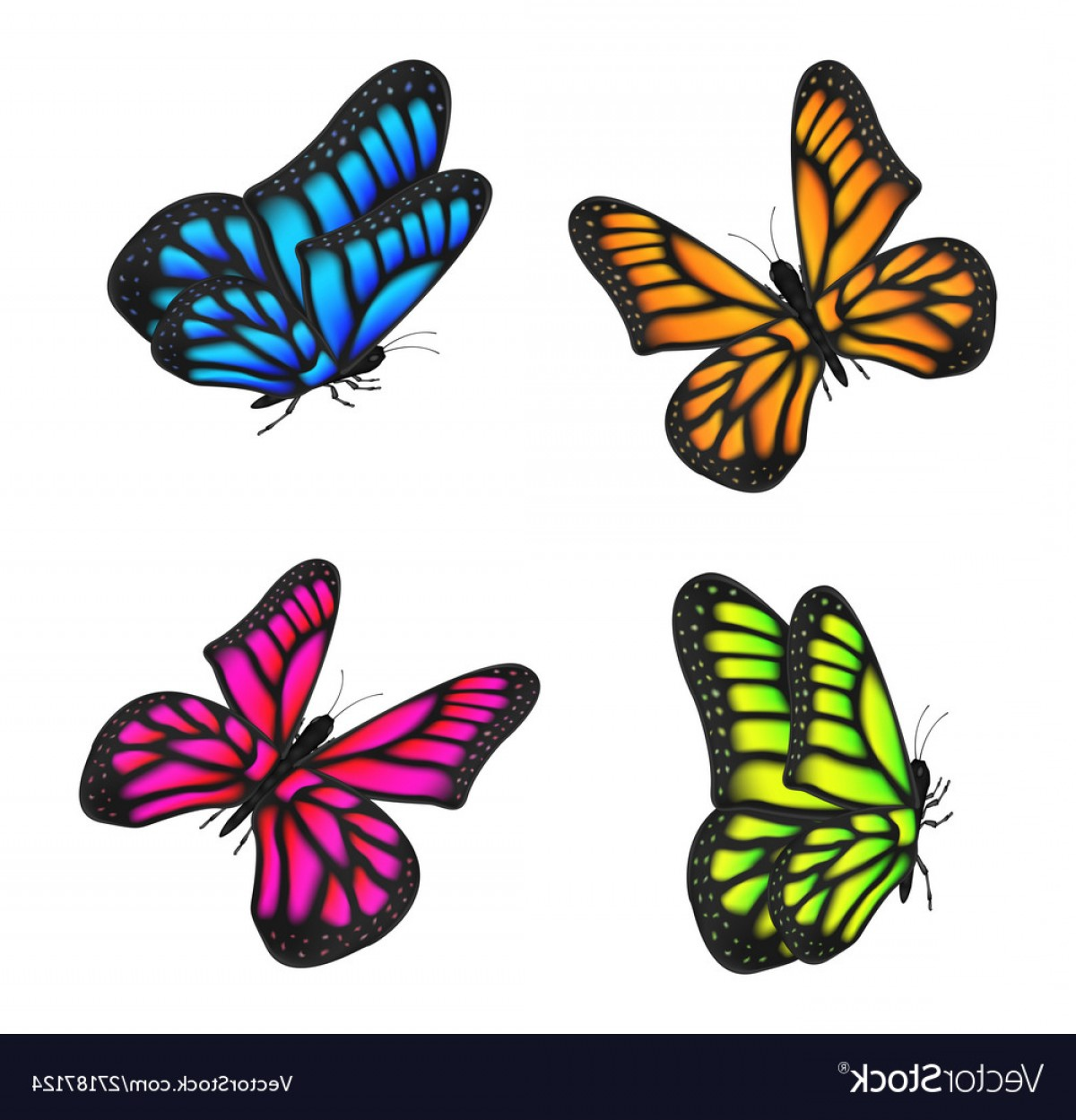 Real Butterfly Vector: Set Real Colorful Butterfly Flying Isolated Vector