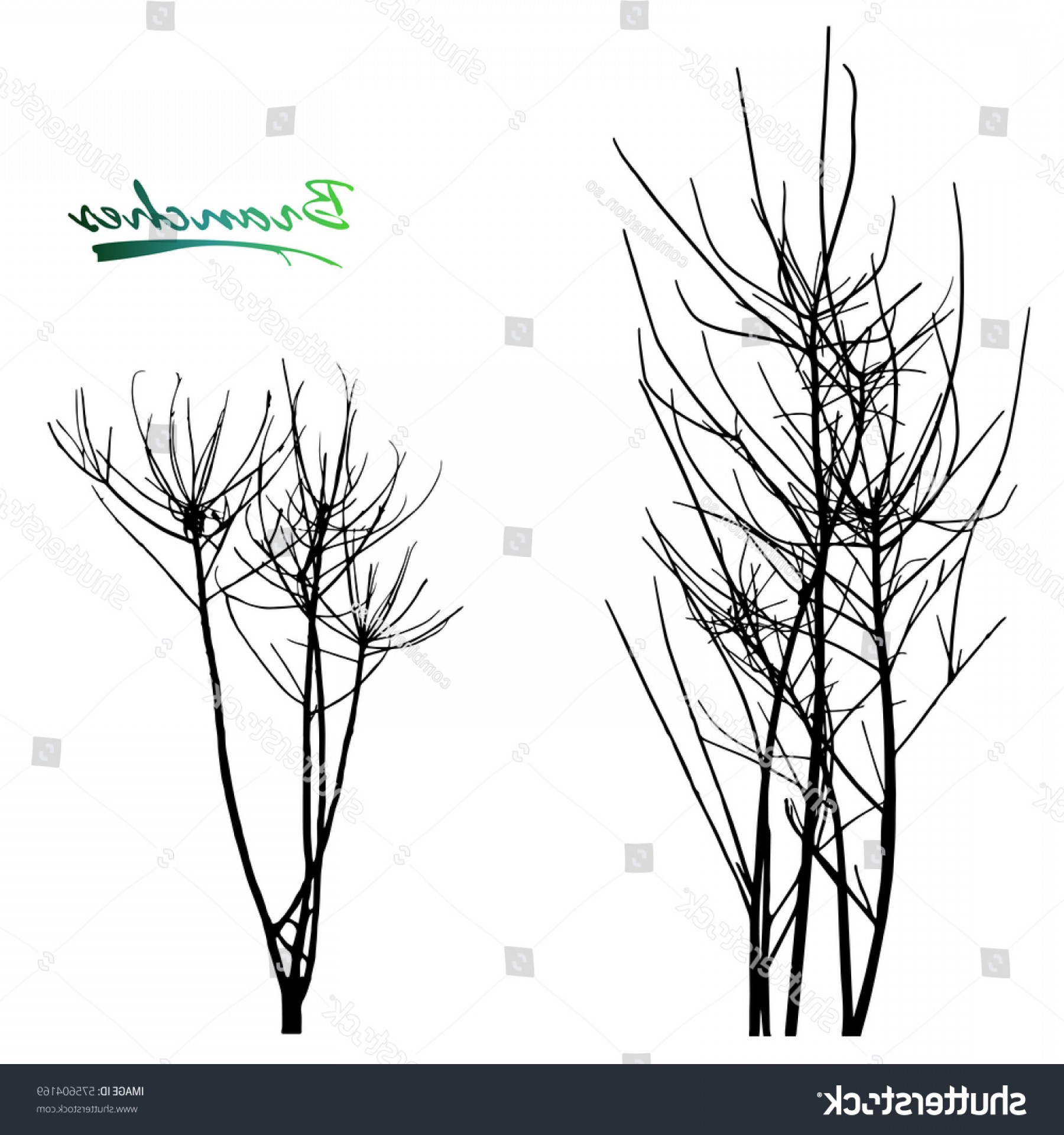 Sapling Vector Tree Silhouette Art: Set Trees Branches Silhouette Sapling Seedling