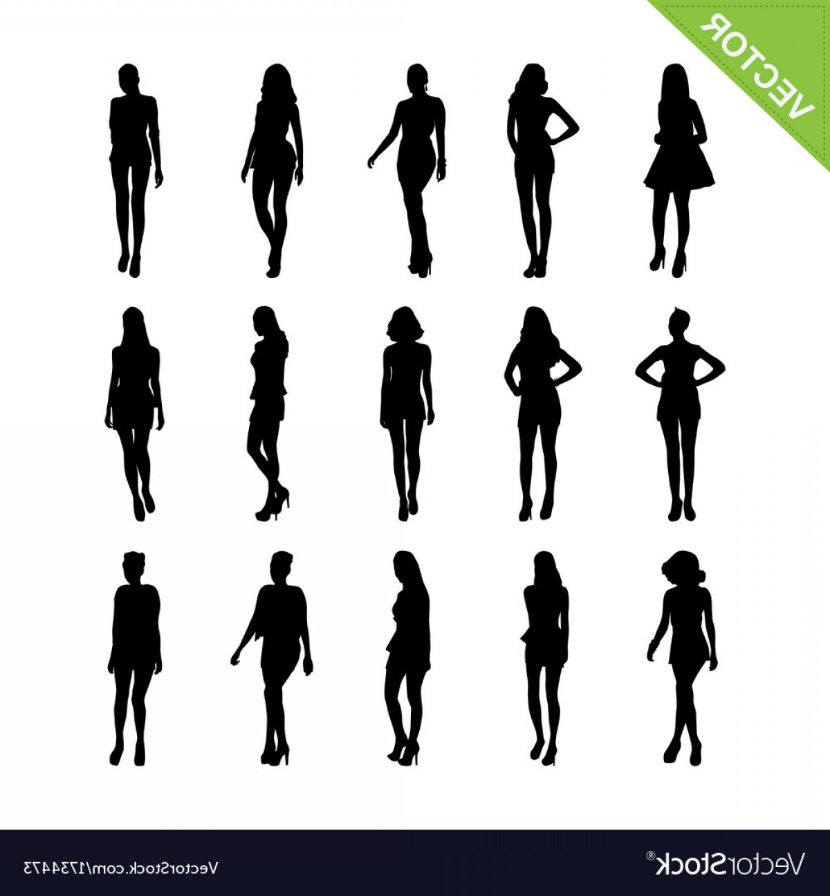 Vector Model Poses: Sexy Women And Model Posing Silhouettes Vector