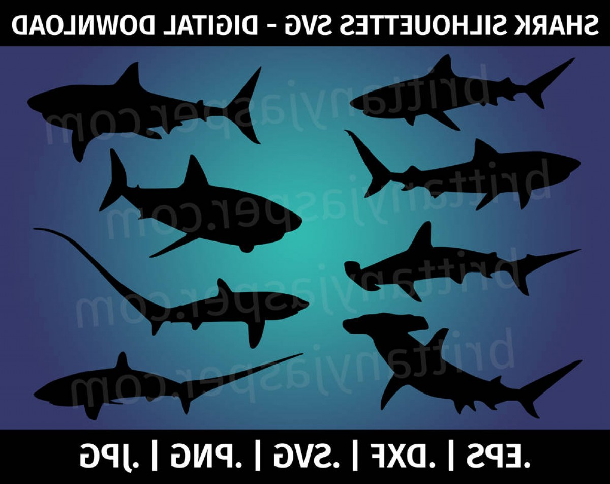 Bull Shark Jaws Vector Art: Shark Silhouettes Svg Vector Clip Art