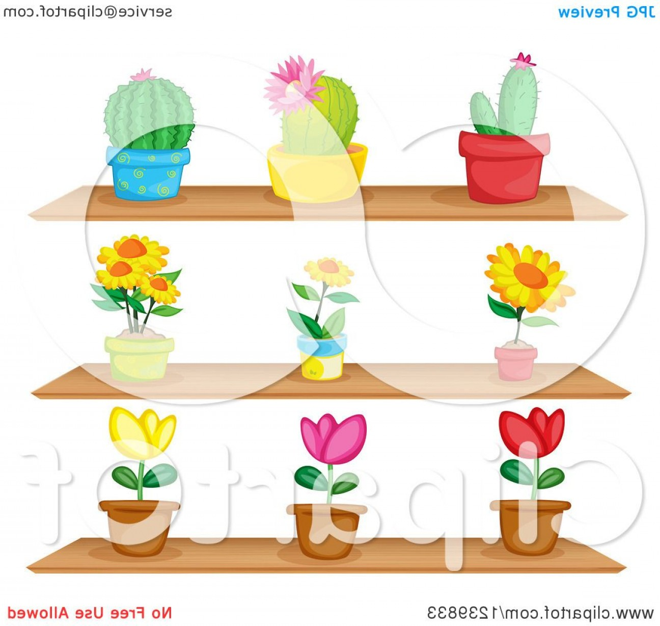 Cactus And Flower Vector: Shelves Of Potted Cactus And Flower Plants