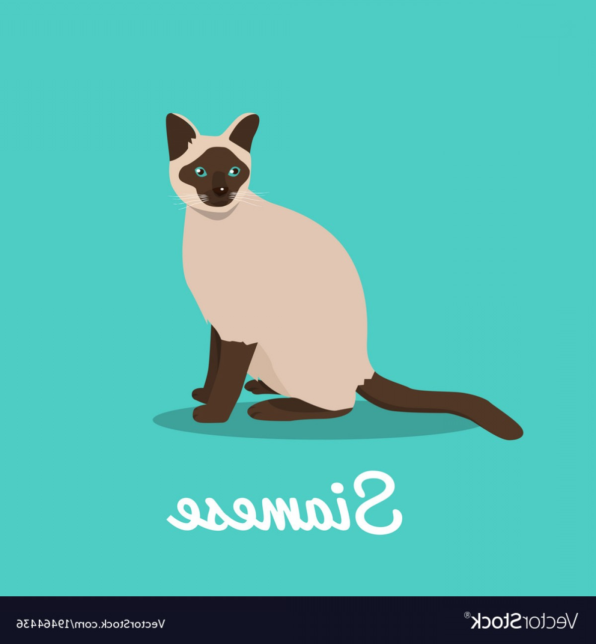 Siamese Cat Vector Transparent Background: Siamese Cat On Sky Blue Background Vector