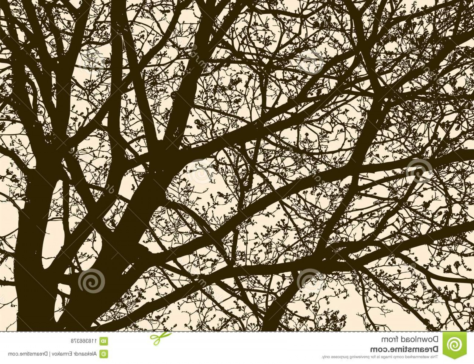 Spring Vector Silhouette: Silhouette Flowering Tree Spring Vector Image Branches Deciduous Image