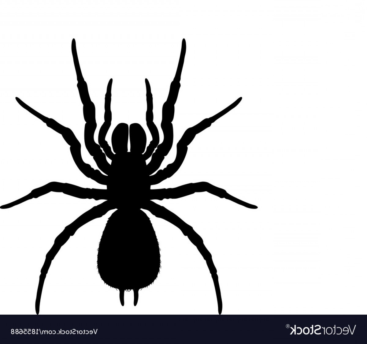 Easy Spider Vector Illustration: Silhouette Of A Spider Vector