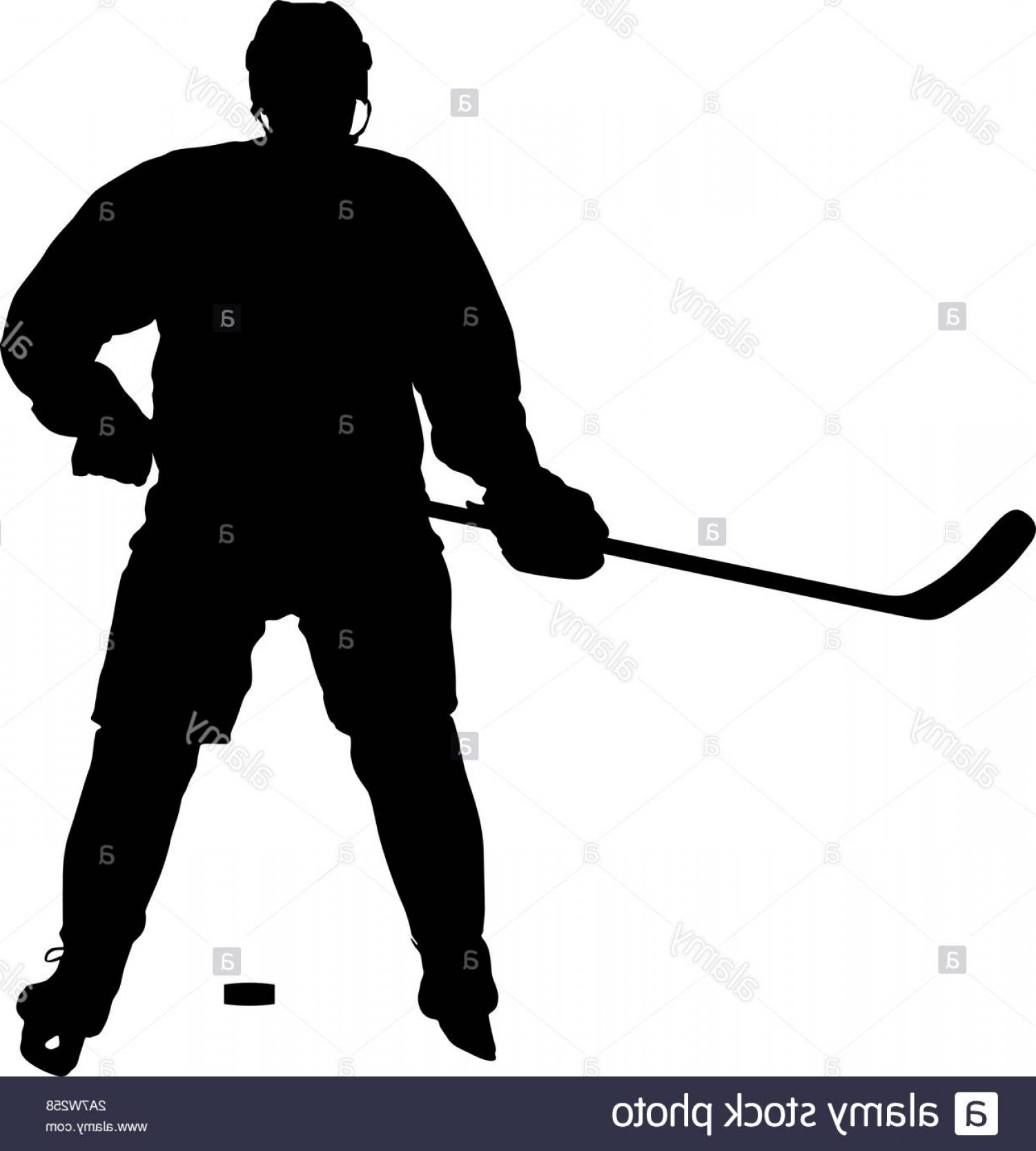 Hockey Player Silhouette Vector: Silhouette Of Hockey Player Isolated On White Image