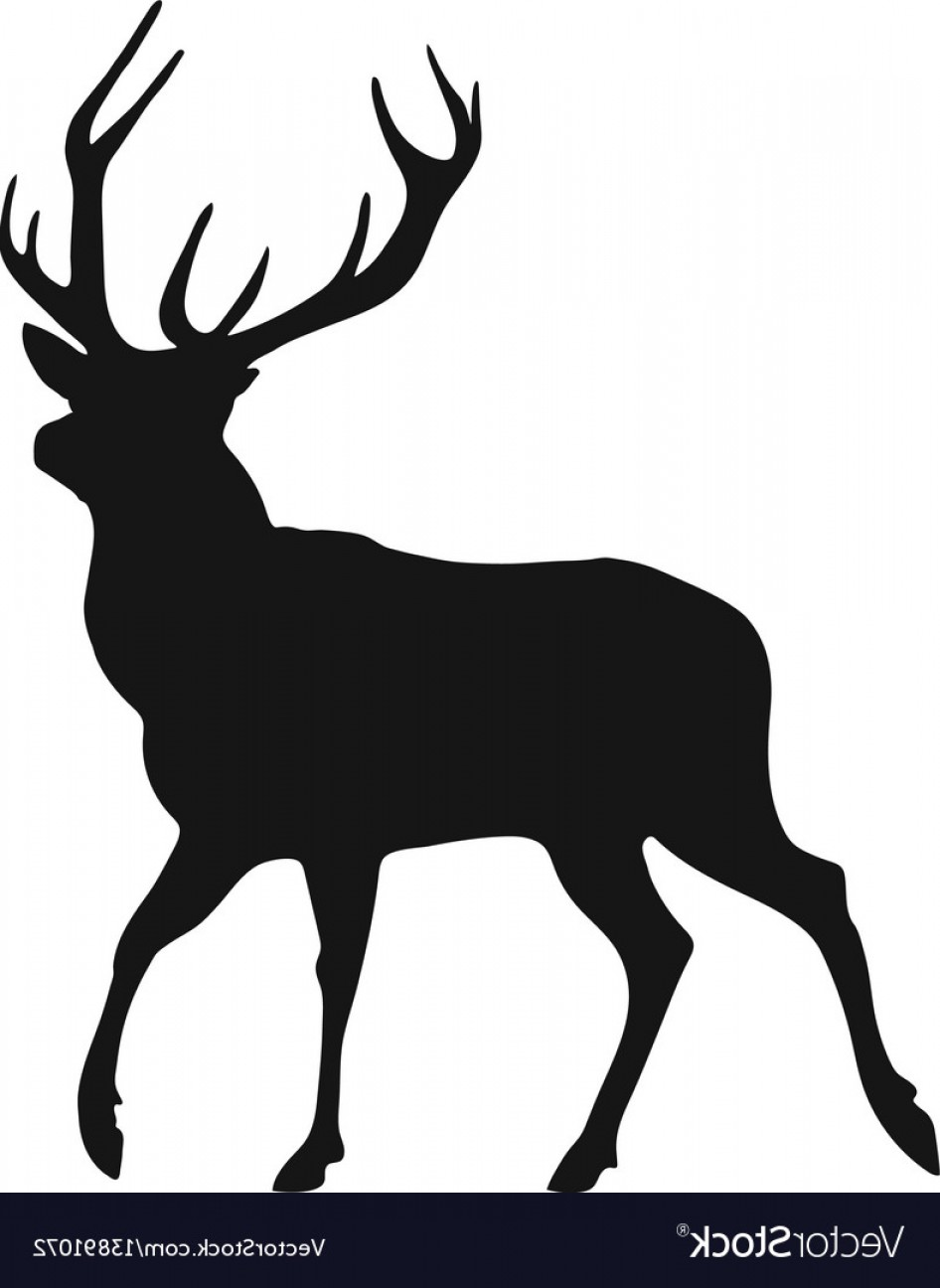 Vector Buck Print: Silhouette Of The Buck Vector