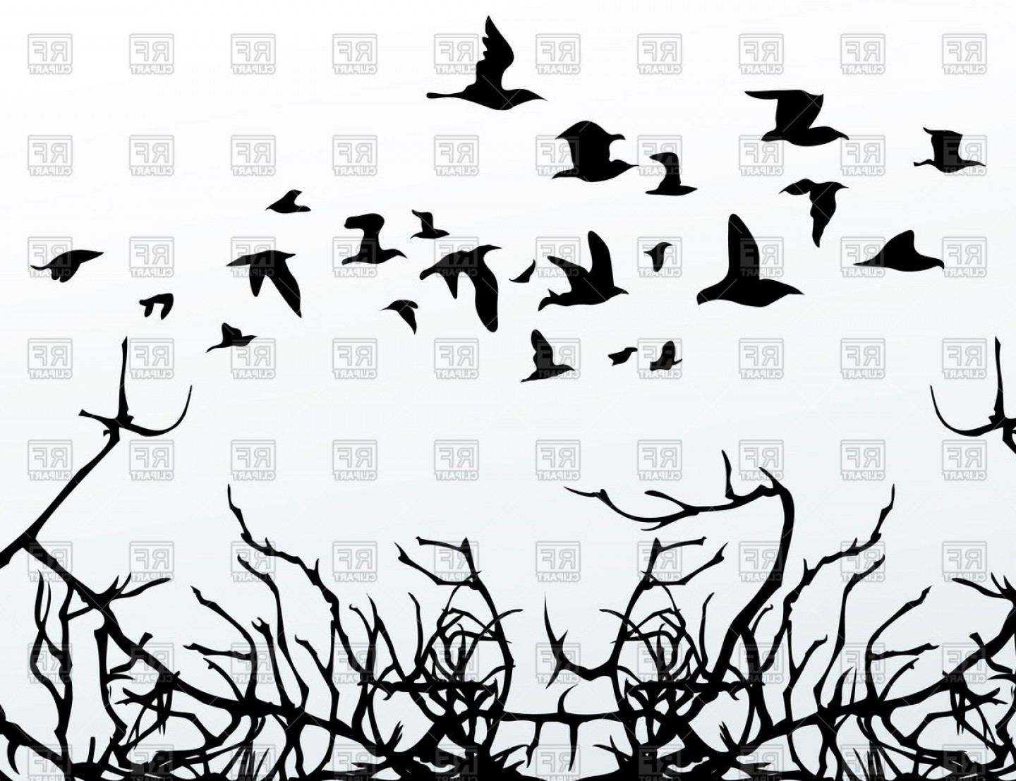 Black And White Bird Free Vector Graphics: Silhouettes Of Birds And Branches Vector Clipart