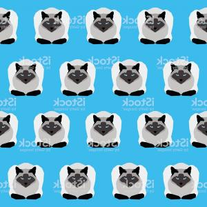 Siamese Cat Vector Transparent Background: Siamese Cat Seamless Pattern Background Gm