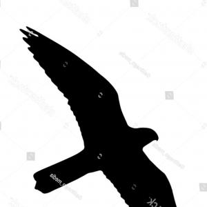 Falcon Silhouette Vector: Photoflying Falcon Set Of The Black Vector Silhouettes