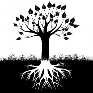 Vector Tree With Roots Drawing: Silhouette Of A Tree With Roots