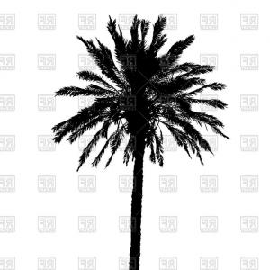 Tree Silhouette Vector Clip Art: Silhouette Of Palm Tree Vector Clipart
