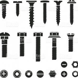 Screw Vector: Screw Vector Illustration Isolated On White