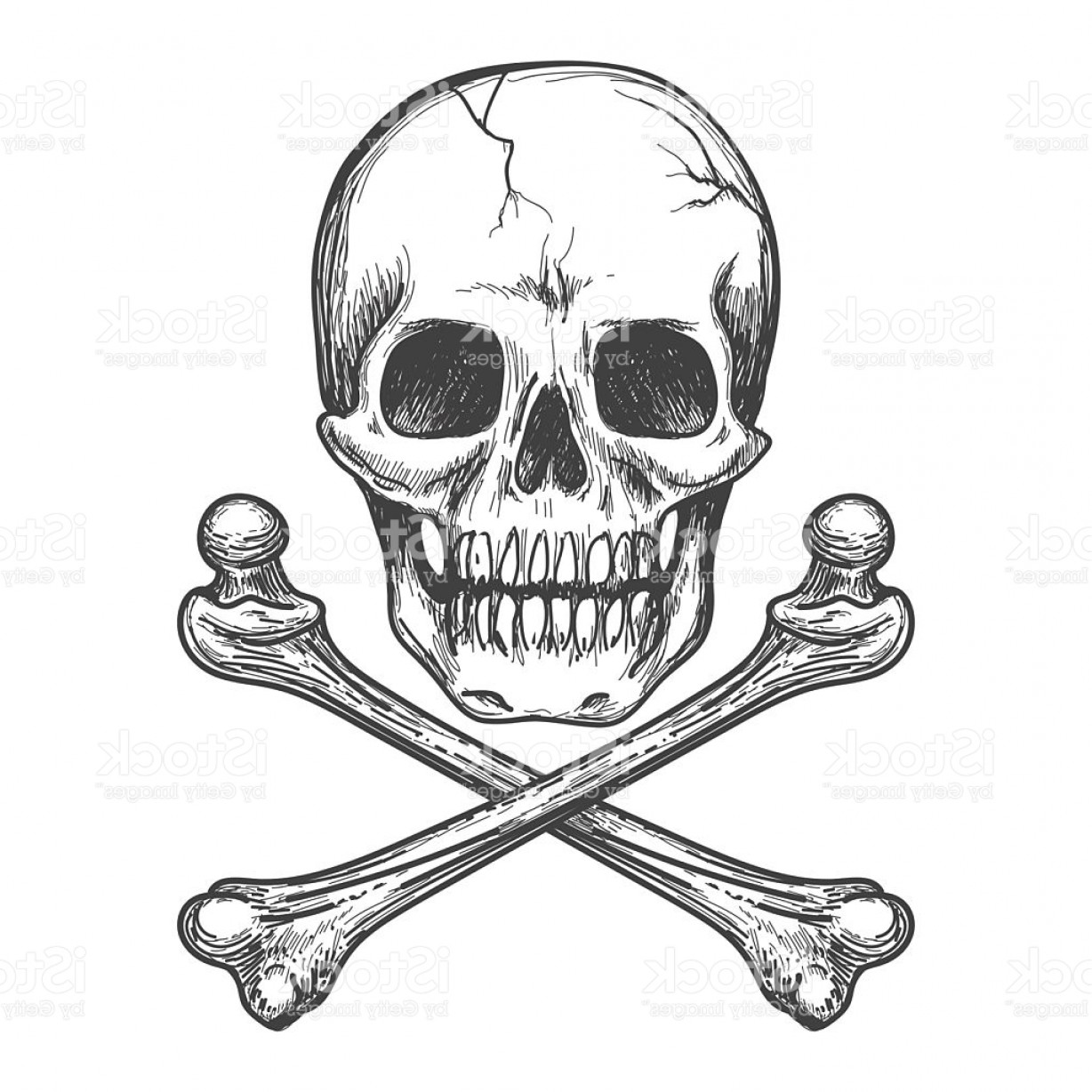 Skull ND Crossbones Vector: Skull And Crossbones Vector Illustration Gm
