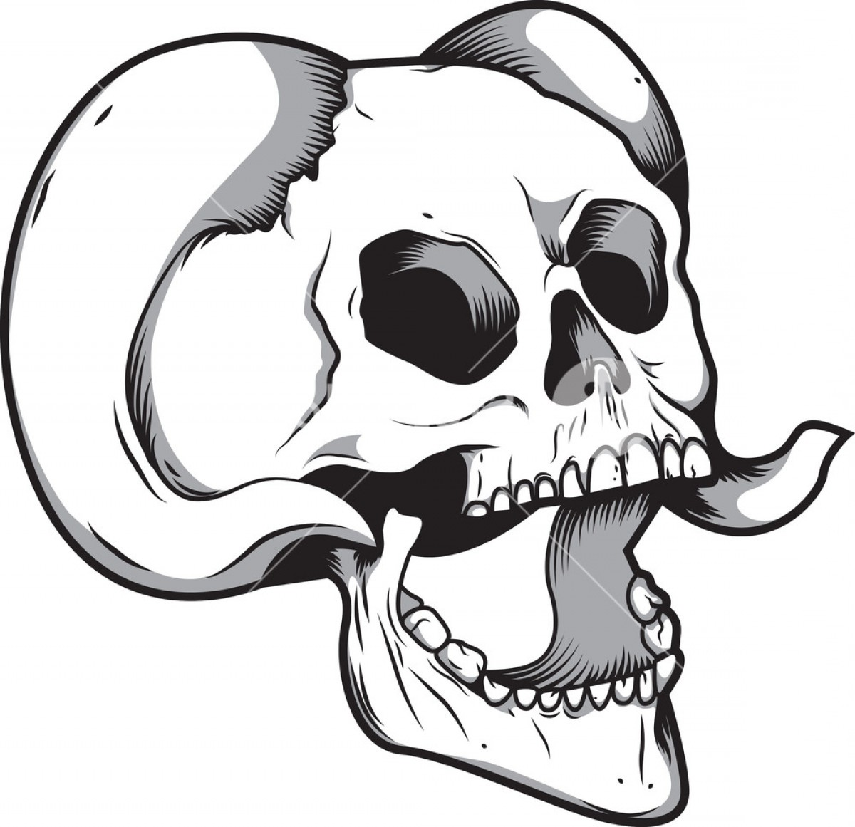 Cool Skull Vector: Skull Vector Element With Horn Rwxexcnnxuzjgmpnmz