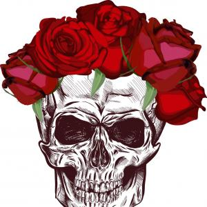 Skeleton And Roses Vector: Skull And Roses Sketch With Gradation Effect Vector