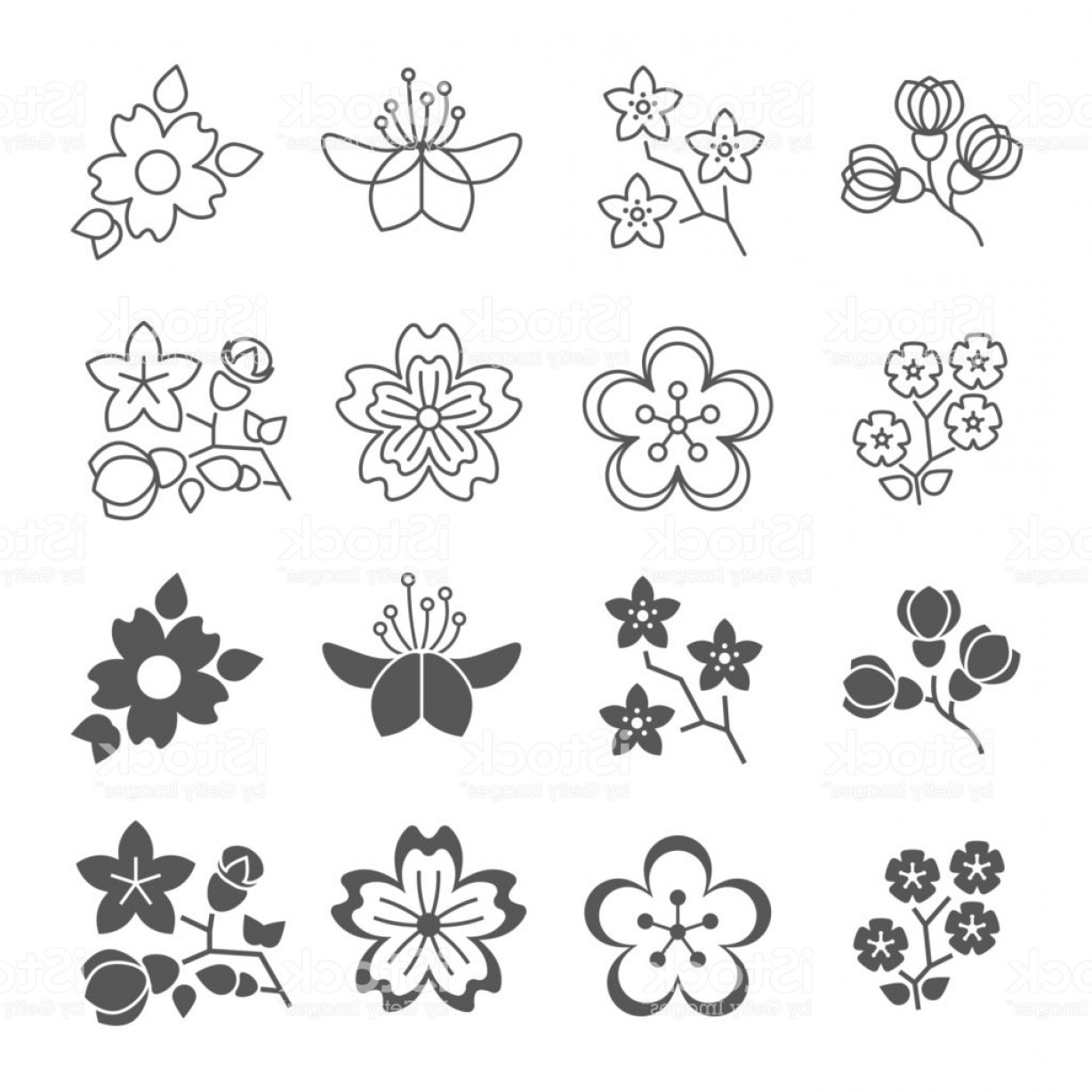 Spring Vector Silhouette: Spring Blossom Flowers Line And Silhouette Icons Set Gm
