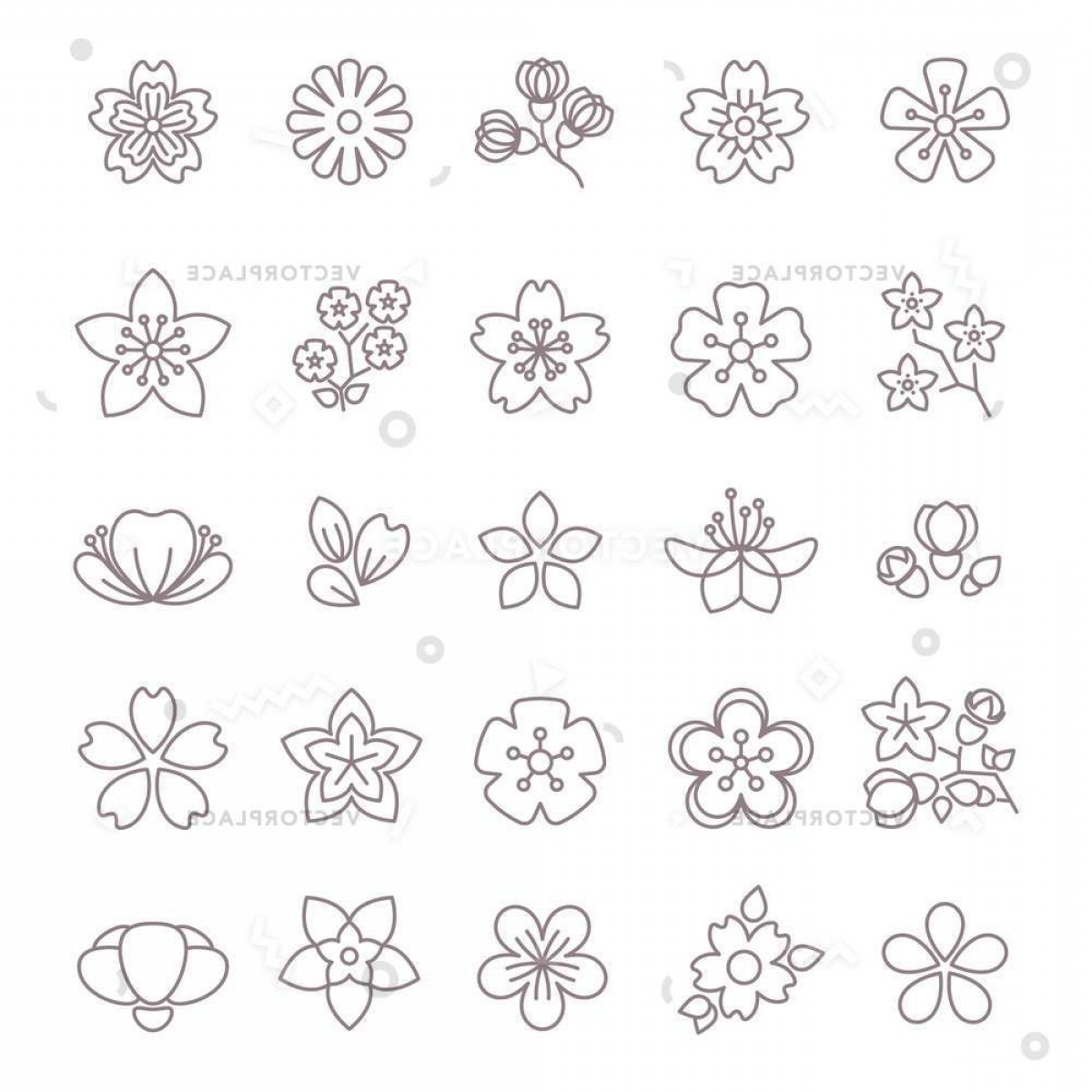 Floral Vector Icon: Spring Flower Thin Line Icons Set Vector Illustration