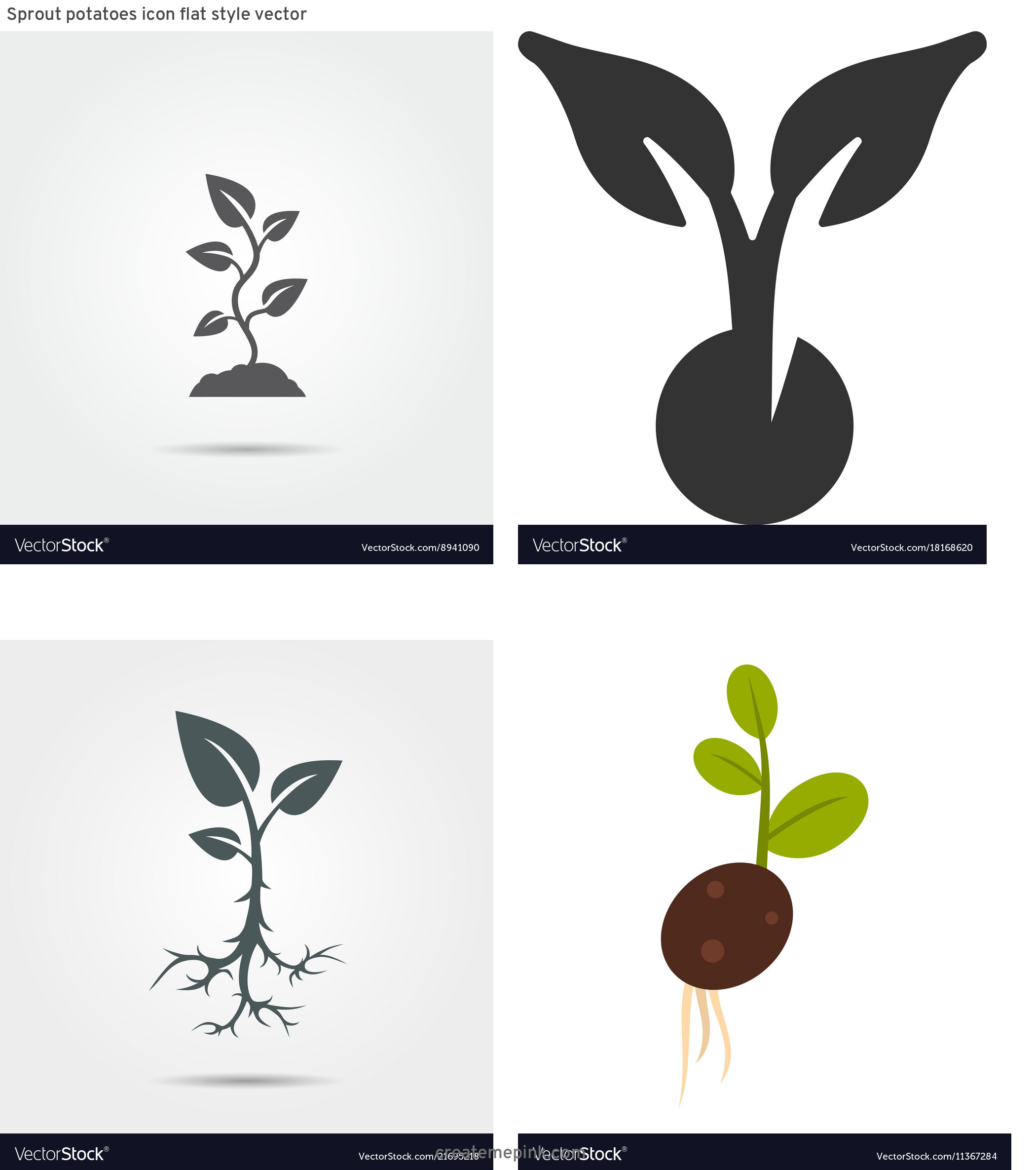 Sprout Icon Vector: Sprout Potatoes Icon Flat Style Vector
