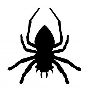 Black Widow Spider Vector: Spider Silhouette Isolated Black Widow Vector