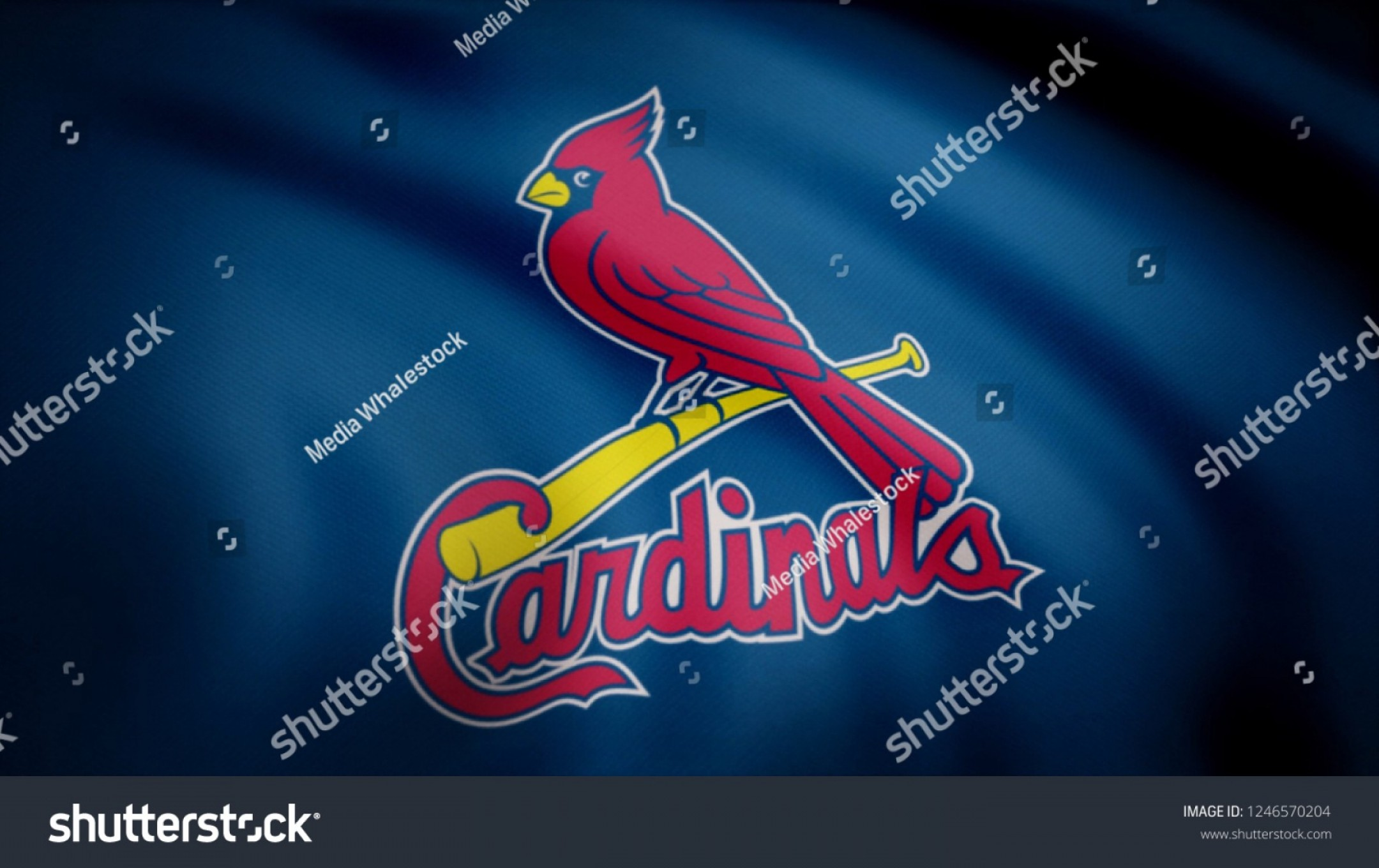 Anaheim Angels Logo Vector Art: St Louis Cardinals Cap Logos Vector