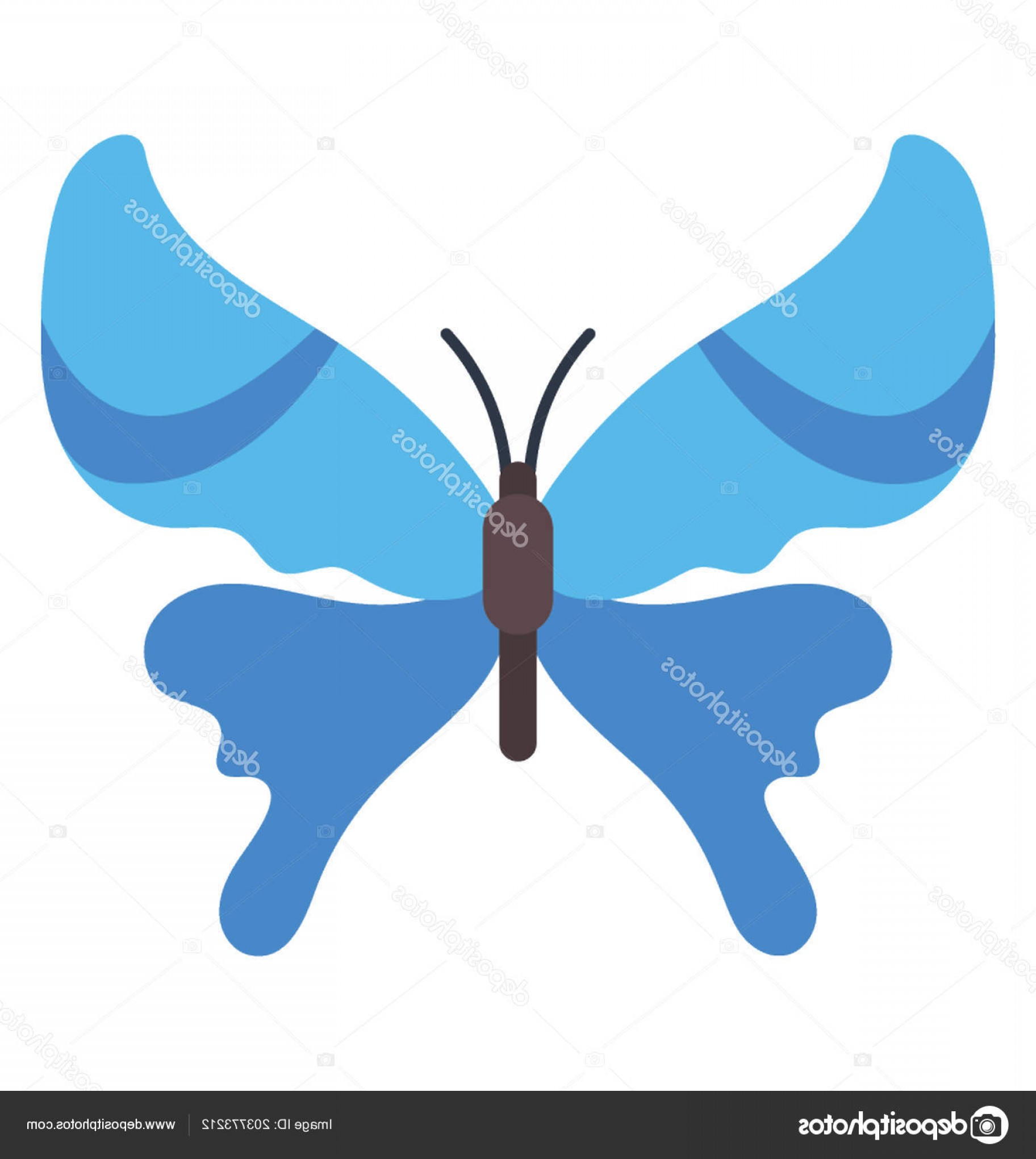 Real Butterfly Vector: Stock Illustration Amazing Icon Designed Real Sense