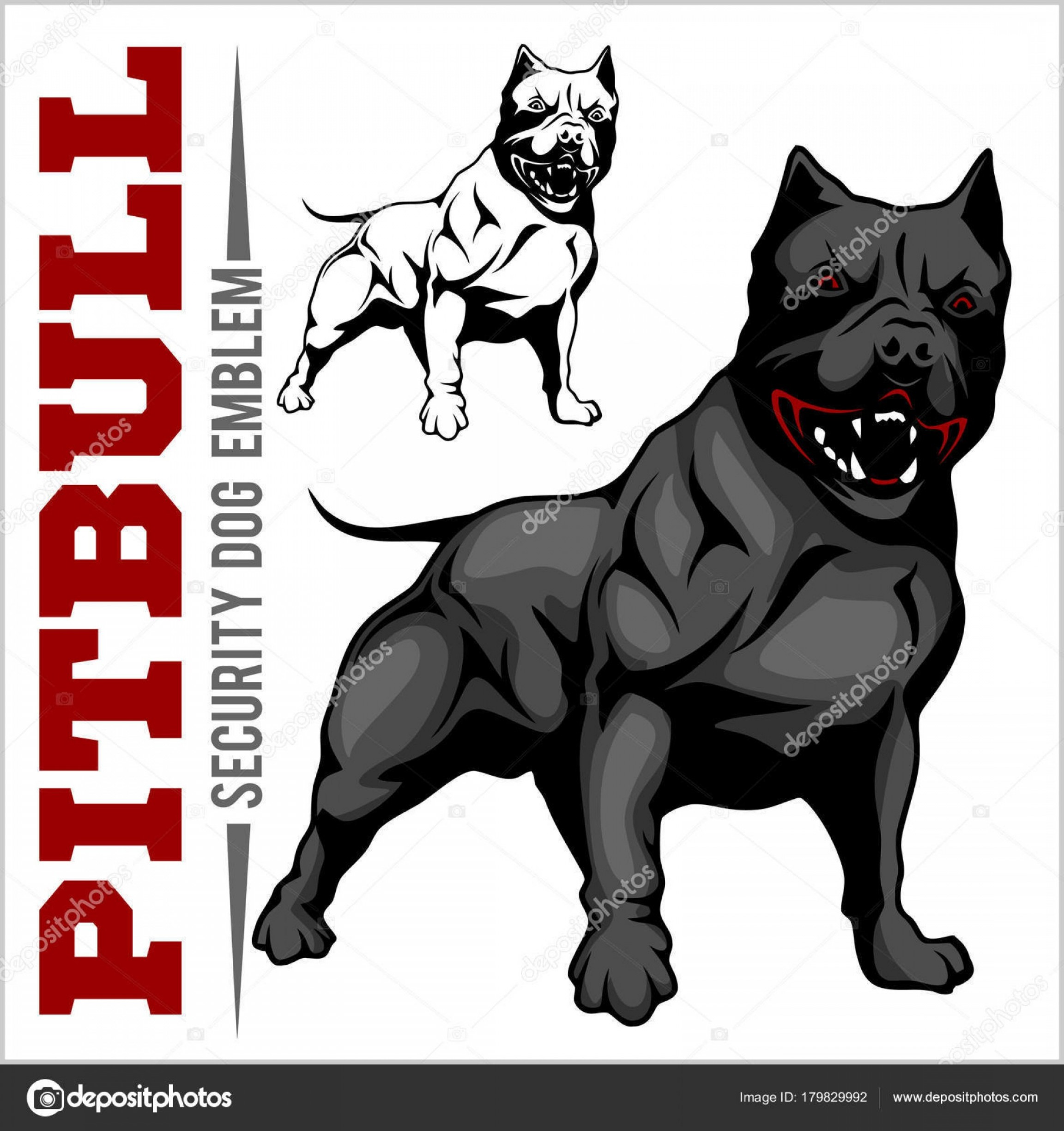 Pit Silhouette Vector: Stock Illustration American Pit Bull Terrier Pitbull