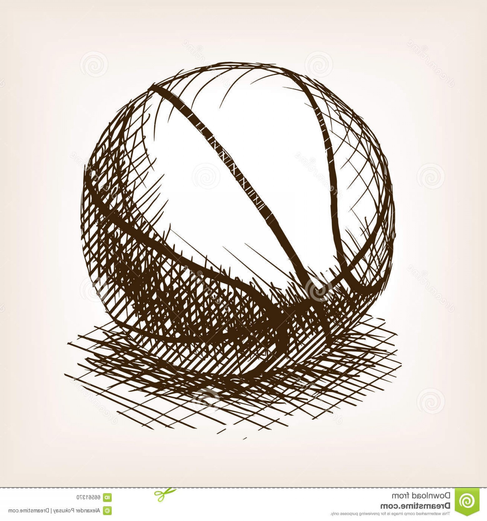 Vintage Basketball Vector: Stock Illustration Basketball Hand Drawn Sketch Style Vector Illustration Old Engraving Imitation Ball Imitation Image