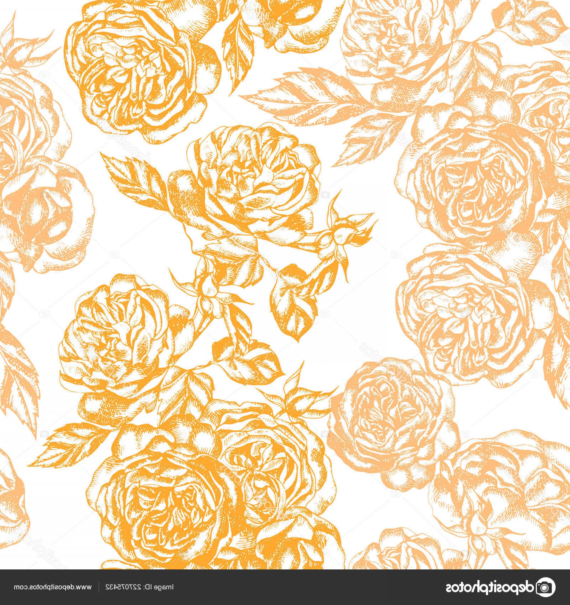 Beautiful Flowers Vector Graphic: Stock Illustration Beautiful Graphic Pattern Rose Flowers