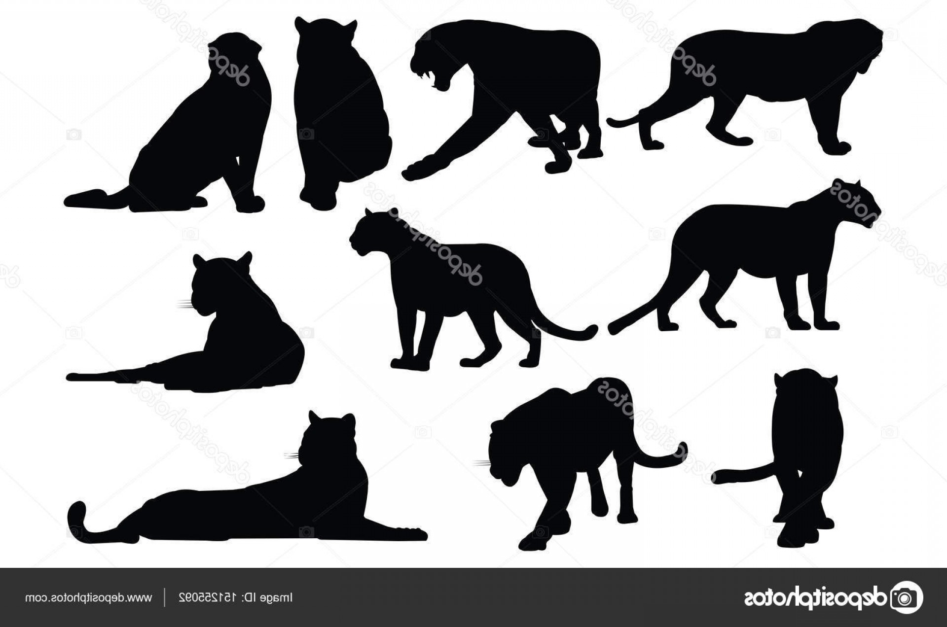 Panther Silhouette Vector: Stock Illustration Black Panther Silhouette Vector Illustration