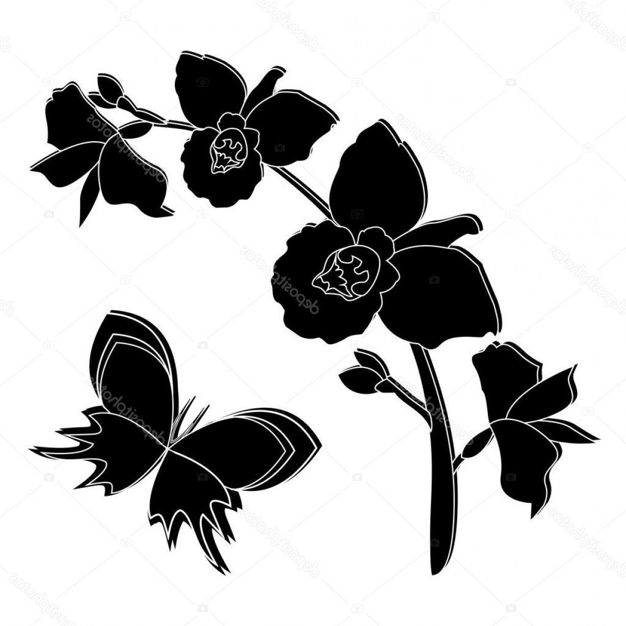 Butter Fly And Flower Vector Black And White: Stock Illustration Black Silhouette Of Orchid Flowers
