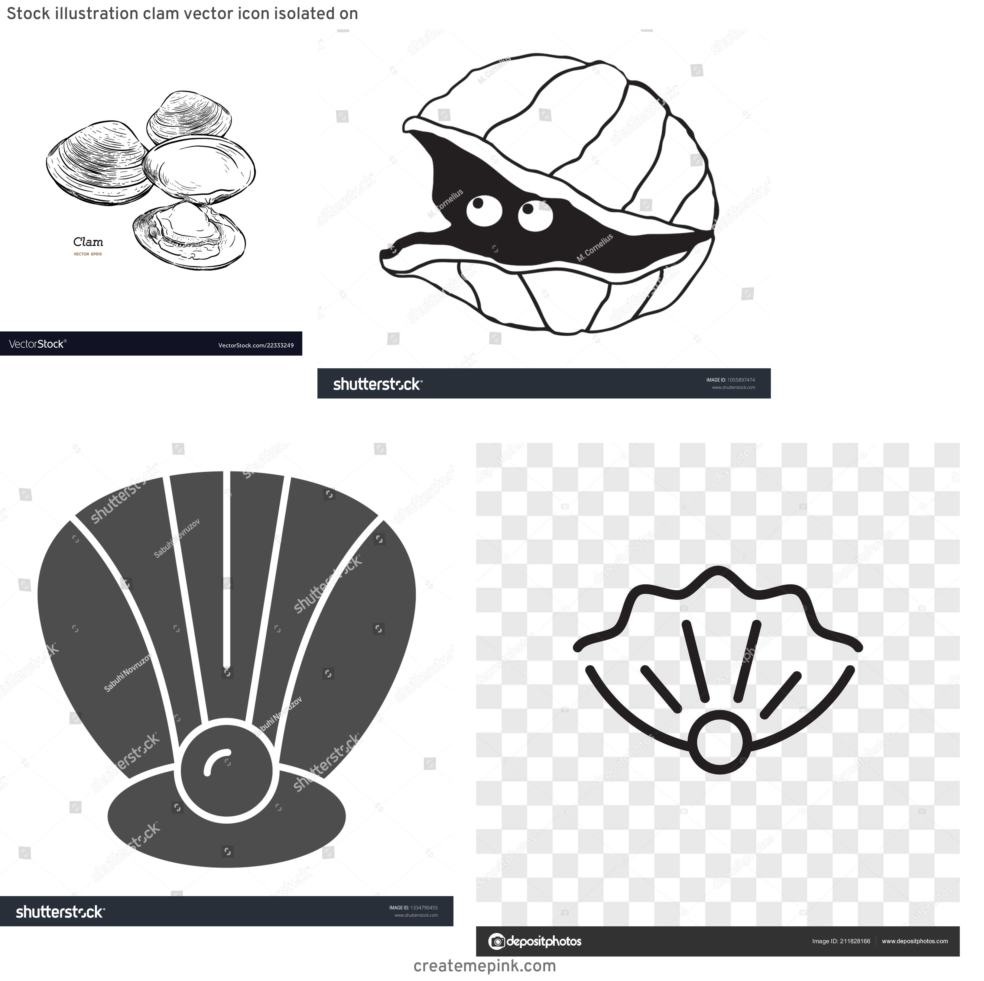 Clam Vector: Stock Illustration Clam Vector Icon Isolated On