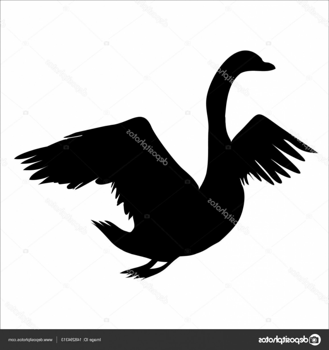 Swan Silhouette Vector: Stock Illustration Design Of Black Swan Silhouette