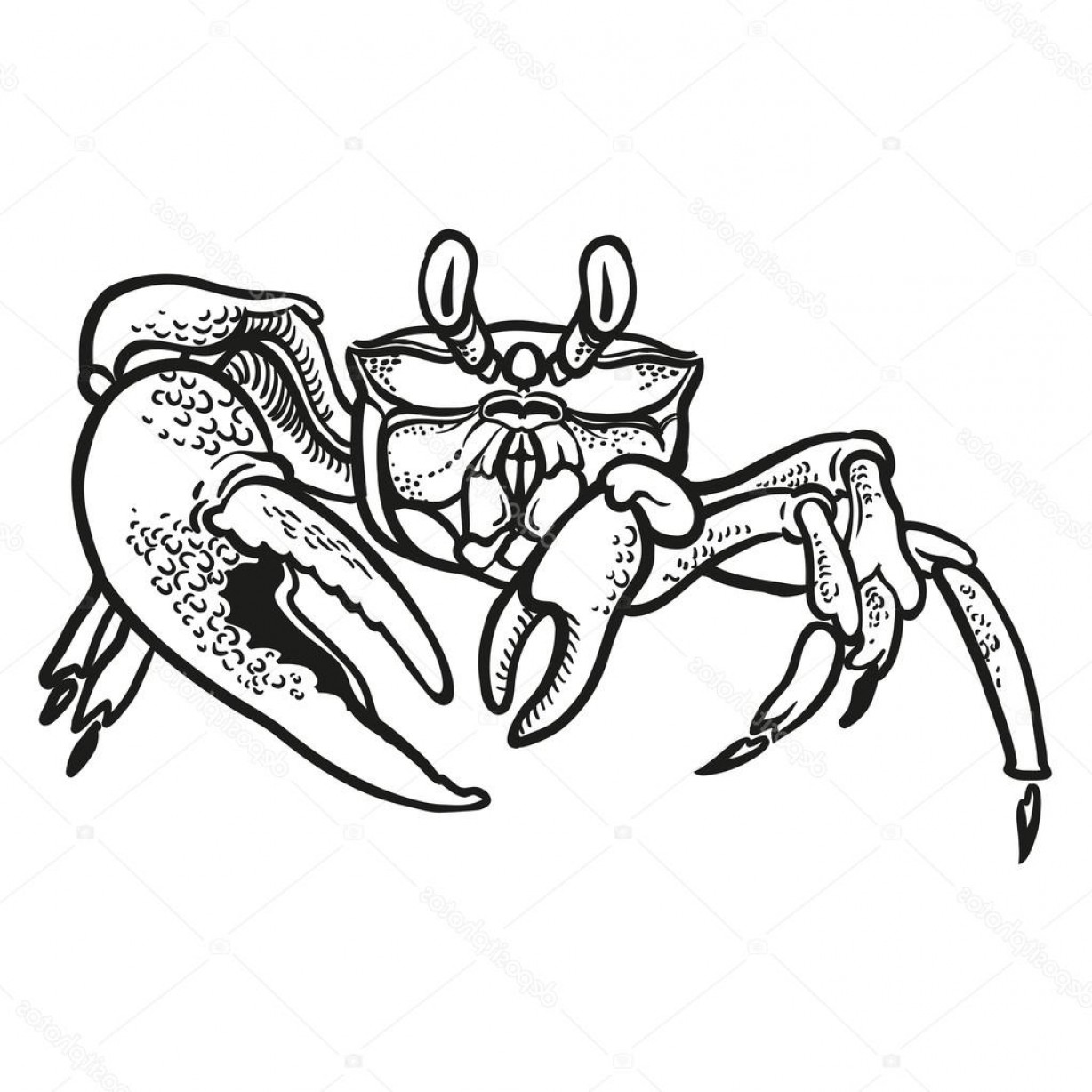 Crab Vector Black: Stock Illustration Detailed Hand Drawing Crab Vector
